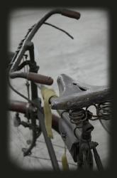 Bike 2_3